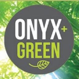 OnyxAndGreenLogo2